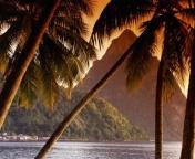Пальмы, море, закат... даже в отпуск захотелось